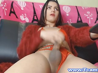Gorgeous Shemale Got Admiration Away from Jerking Her Cock